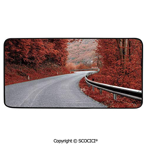 Rectangular Area Rug Super Soft Living Room Bedroom Carpet Rectangle Mat, Black Edging, Washable,Fall,Dreamy Asphalt Road with Mid Autumn Colors Nobody Surreal,39