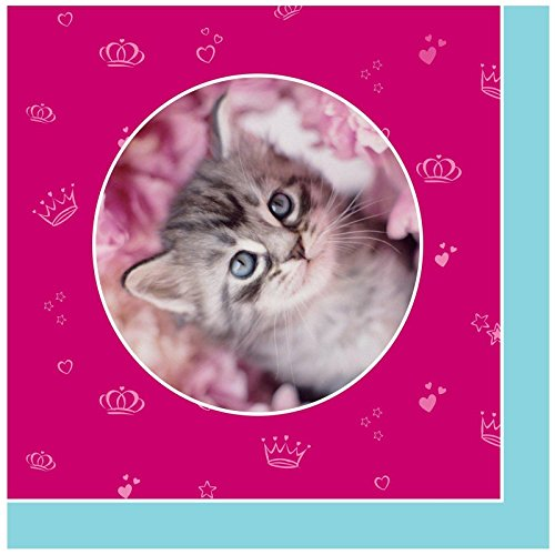 [Rachael Hale Glamour Cats Party Supplies - Lunch Napkins (20)] (Hello Kitty Pinata Kit)