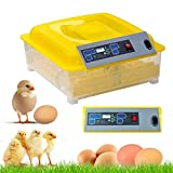 Radical Deal Automatic 48Eggs Digital Clear Egg Incubator Hatcher Turning Temperature Control review