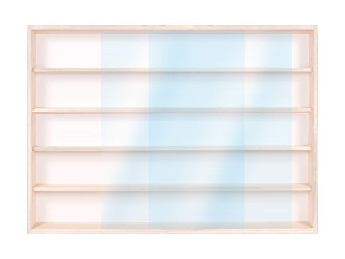 90 x 49 x 8,5 cm Con Guide 5 ripiani Modellismo 2 ante plexiglass scorrevoli Scala N e H0 Collezionismo Alsino V90.5a Vetrina espositiva in legno di betulla non trattato