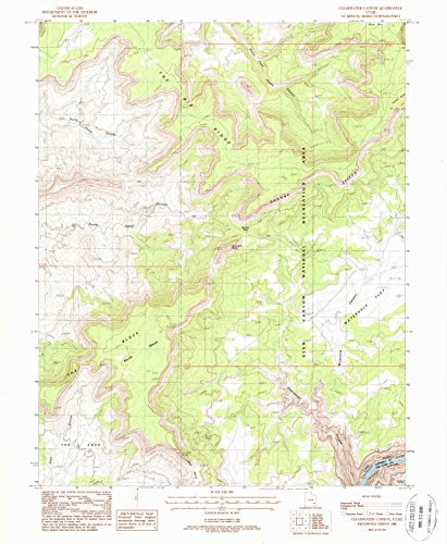 Clearwater Canyon Ut Topo Map  1 24000 Scale  7 5 X 7 5 Minute  Historical  1988  Updated 1988  26 6 X 21 8 In   Paper