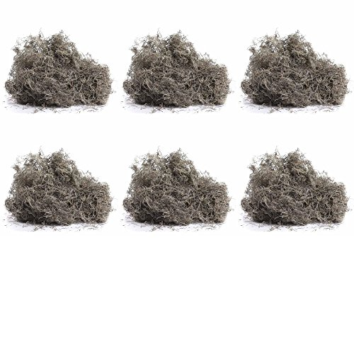 Bulk Buy of Natural Dried Forest Spanish Moss; About 36 Cups