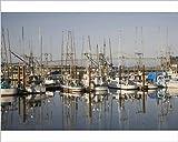 10x8 Print of OR, Oregon Coast, Newport, Commercial fishing fleet at the Port of Newport (11163946)