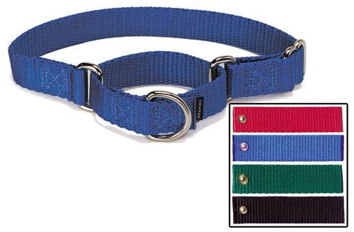 Premier Collar, Small 3/4-Inch, Green, My Pet Supplies