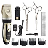 BestTrendy Dog Clipper,Low Noise Rechargeable Cordless Pet Dogs and Cats Electric Clippers Grooming Trimming Kit Tool Set (Gold+Black)