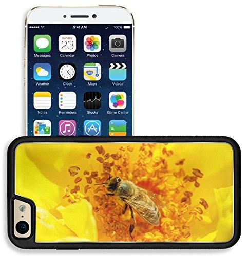 Liili Apple iPhone 6 iPhone 6S Aluminum Backplate Bumper Snap iphone6/6s Case iPhone6 ID: 27690273 Honeybee Apis mellifera pollinates a yellow rose Macro photo ()