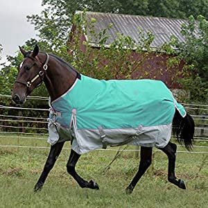 Chicks Rugged Ride 1200 Denier Midweight Waterproof Turnout Blanket - 200 Gram Fill