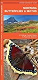 Montana Butterflies and Moths, James Kavanagh, 1583554297