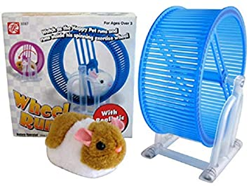 Buy Westminster Toys The Happy Hamster Wheel Runner Online At Low Prices In India Amazon In