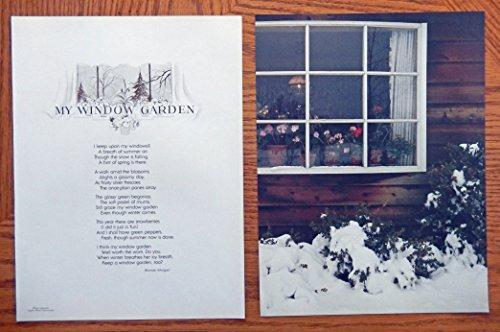 My Window Garden, poen by Bonnie Morgan, art by Alpha photo. Authentic oringial vintage 1978 Magazine Art