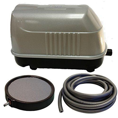 ion System LLS-20 , For Ponds to 2,000 Gallons, And Pond Depths To 12 Feet (Pond Aeration Fountain)