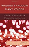 img - for Wading Through Many Voices: Toward a Theology of Public Conversation book / textbook / text book