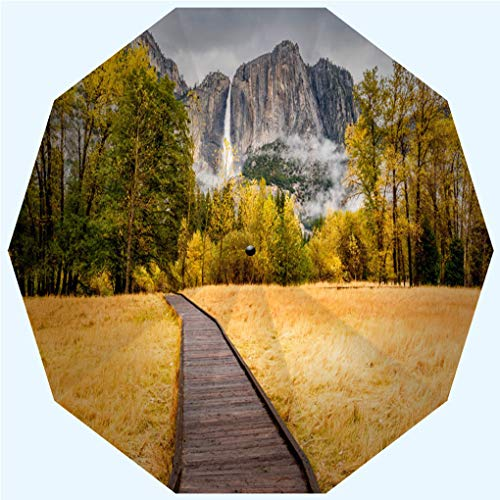 Fashion Travel Umbrella Sun Umbrella UV protection automatic opening and closing, Meadow with boardwalk in Yosemite National Park, windproof - rainproof - men - ladies - versatile - 42 inches