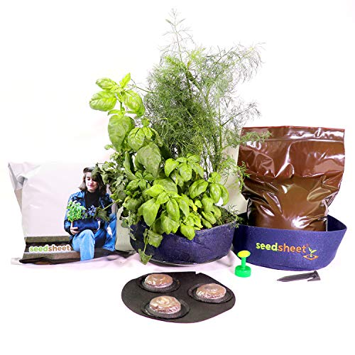 - Seedsheet, Grow Your Own Mini Herbs Kit, Container Garden, Organic Seed Pods, Sweet Basil, Cilantro, and Dill, As Seen on Shark Tank