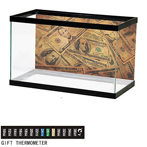 (Aquarium Background,Money,Grunge Style Background with Fiver Sawbuck and Century Note Important Figures,Pale Green Brown Fish Tank Backdrop 72