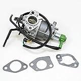 Briggs & Stratton 797758 Lawn & Garden Equipment Engine Carburetor