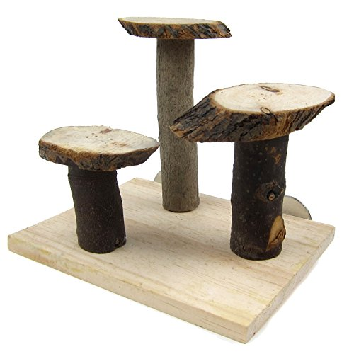 Alfie Pet by Petoga Couture - Renny Natural Wood Jumping Platform for Birds by Alfie