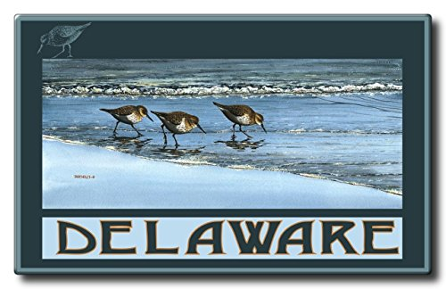 Delaware Breakfast At Beach Aluminum HD Metal Wall Art by Artist Dave Bartholet (11 x 17.6 inch) Art Print for Bedroom, Living Room, Kitchen, Family and Dorm Room Wall - Park Arches At Deer