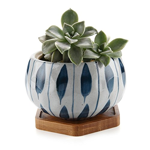 "T4U Japanese Style 4.25"" Ceramic Bowl Shape Succulent Plant Pot with Bamboo Tray - Orchid Pattern"