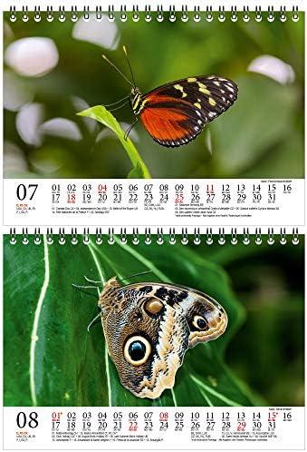 Schmetterlingszauber DIN A5 Tischkalender für 2021 Schmetterling - Geschenkset Inhalt: 1x Kalender, 1x Weihnachts- und 1x Grußkarte (insgesamt 3 Teile)