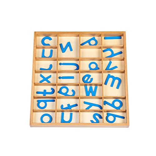 EOFEEL Montessori small Wooden Movable Alphabet with Box for Early Preschool Learning Toy(Blue) by EOFEEL (Image #6)