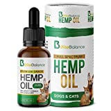 Cheap Calming Hemp Oil for Dogs & Cats 250mg – Anxiety Relief – Natural Pain Relief – Stress Separation – Full Extract USA Grown – Easily Apply to Treats for Stress & Joint Support – Omega 3,6 & 9 – MCT Oil