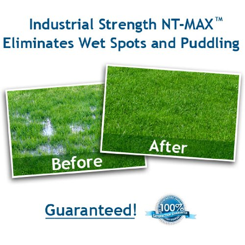 Powerful NT-MAX Septic Tank Maintenance Treatment #28. Water Soluble - Flushable Bio-Packs Guard and Protect your system for life. Eliminates Odors and Keeps Your Entire Septic System Sparkling Clean. Patented and Guaranteed to Perform. 28 Month Supply. by NT-MAX (Image #5)