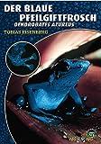 Der Blaue Pfeilgiftfrosch: Denrdobates azureus (Art für Art / Terraristik)