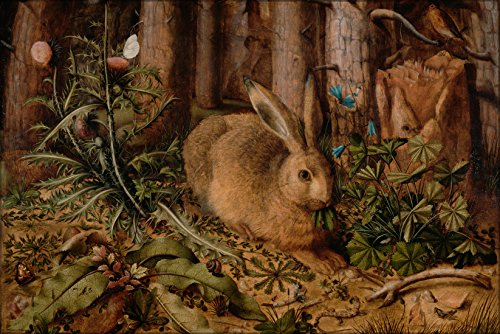 24x36 Poster . Hare Rabbit In The Forest By Hans Hoffmann - Hare Map
