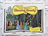"""SLEEPING BEAUTY"" 1970 ORIGINAL MOVIE POSTER FIRST ISSUE 22X28 DISNEY"