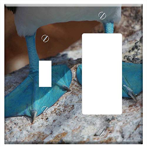 (1-Toggle 1-Rocker/GFCI Combination Wall Plate Cover - Blue-Footed Boobie Ecuador Duck Webbed Feet)