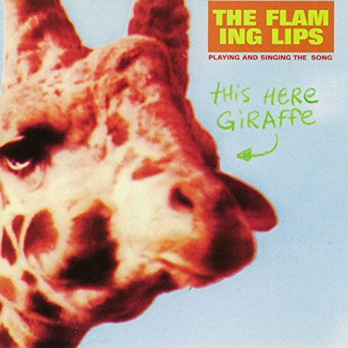 This Here Giraffe (10