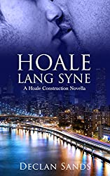 Hoale Lang Syne [Gay Mystery Romance MM] (Hoale Construction Mysteries Book 2)