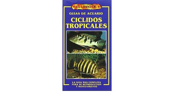 Amazon.com: Ciclidos Tropicales - Guias de Acuario (Spanish Edition) (9788488893321): David Sands: Books