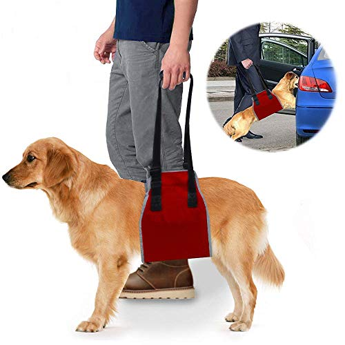 Dog Lift Support Sling & Rehab Harness, Soft Assist & Adjustable Nylon Straps Helps Pet for Arthritis, Poor Stability…
