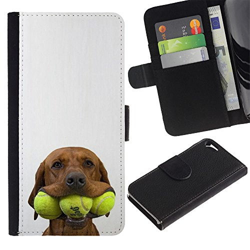 OMEGA Case / Apple Iphone 5 / 5S / tennis golden retriever pet dog / Cuir PU Portefeuille Coverture Shell Armure Coque Coq Cas Etui Housse Case Cover Wallet Credit Card