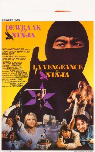 Amazon.com: Revenge of the Ninja – Póster de la película ...