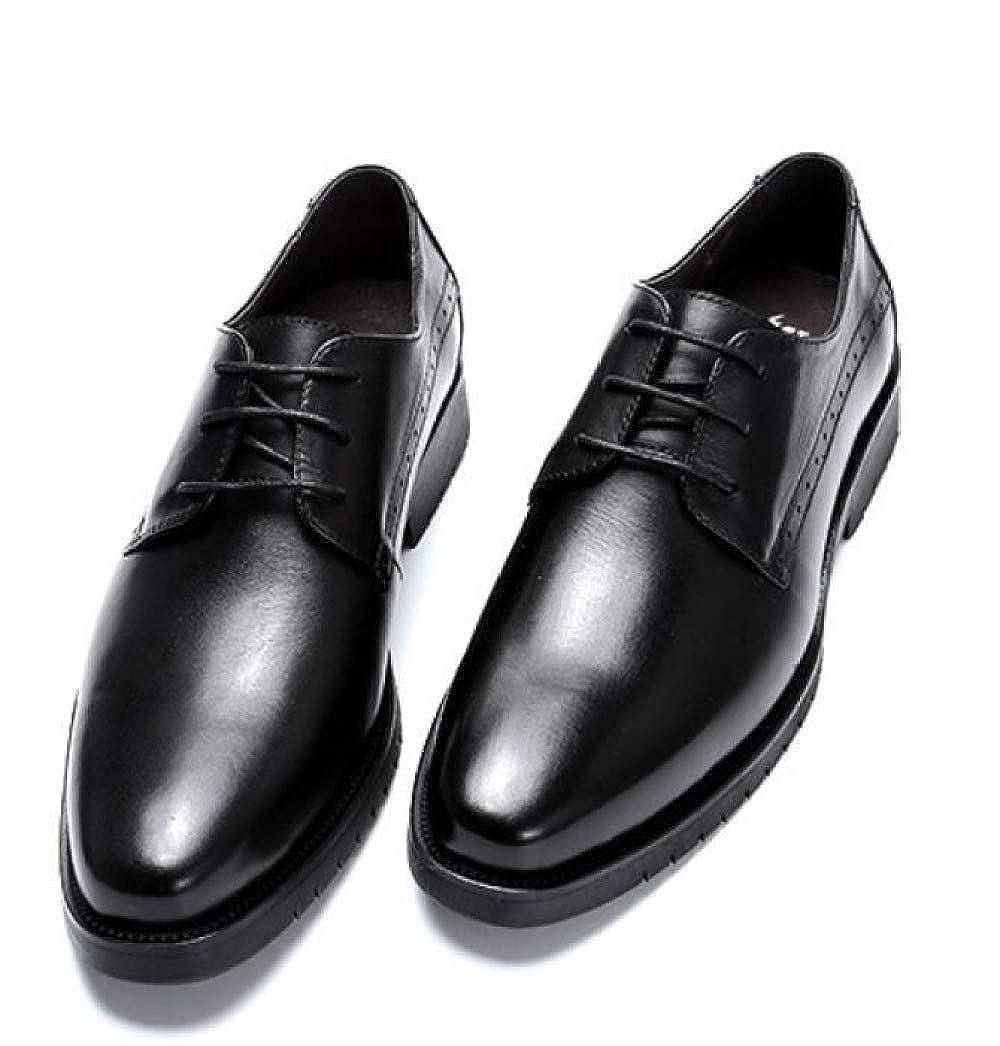 a8b0c9e84a007d WLFHM Business-Schuhe Lässig Frühling und Sommer Herrenschuhe  Abendgarderobe Herren Schnürschuhe