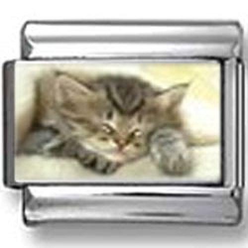 Sleeping Kitty Photo Italian Charm (Italian Kitty Charm)