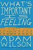 What's Important Is Feeling, Adam Wilson, 0062284789