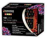 Christmas Workshop 76060 100 LED Battery Operated Net Lights with Timer - Multi-Col