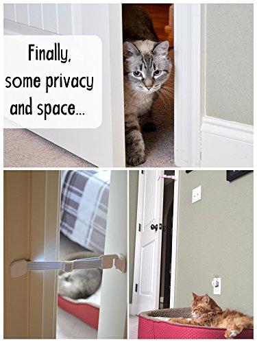 Door Buddy Door Latch Plus Door Stop Keep Dog Out Of