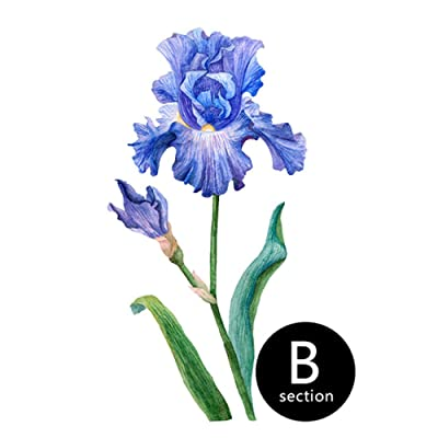 CYSDN Floral Wall Sticker DIY Art Iris Watercolour Painting Wall Art Modern Home Decoration Accessories for Nordic Style Kids Rooms@B_30Cmx60Cm: Home Improvement
