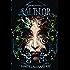 Salinor: The Beginnings