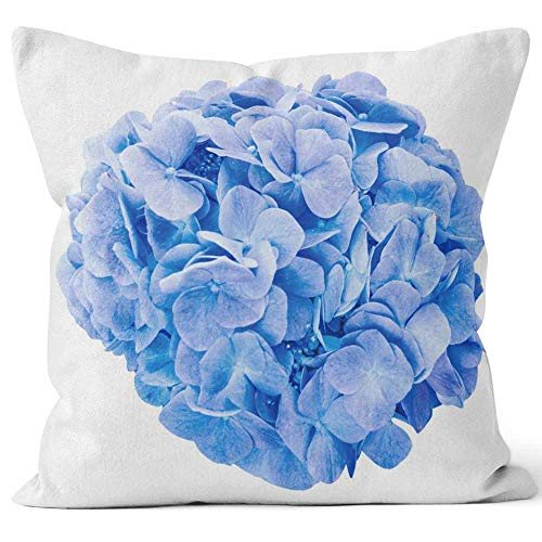 Mop Head Hydrangea - Nine City Mop Head Hydrangea Flower Isolated Throw Pillow Cushion Cover,HD Printing Decorative Square Accent Pillow Case,26