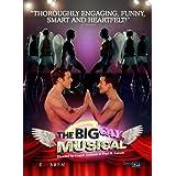 Big Gay Musical, The