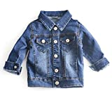 UNIQUEONE Baby Girl's Denim Jacket with Rose Flower Embroidery Kids Toddler Ripped Denim Coat for Girl Size 12-18 Months/Tag90 (Blue4)