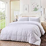 Tumei Hotel Luxury Goose Down Comforter, 100% Egyptian Cotton, 700 Thread Count, 750+ Fill Power, 35 Oz Down Fill Weight, Shell Down Proof with Tabs, Breathable, Hypo-allergenic, Twin, White