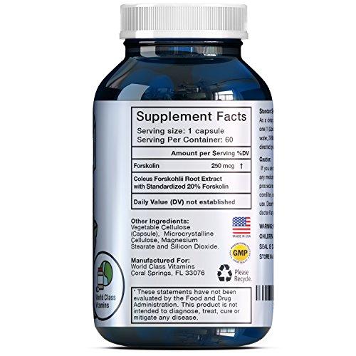 Natural Forskolin Weight Loss Supplement - Metabolism Fuel - for Men + Women - 250 mg Premium Fat Burner Capsules - Trim + Slim Appetite Suppressant - Pure Coleus Forskohlii Root Extract