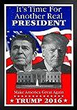 Pyramid America Ronald Reagan Donald Trump Campaign Framed Poster 14x20 inch